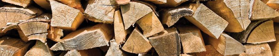 biomass wood