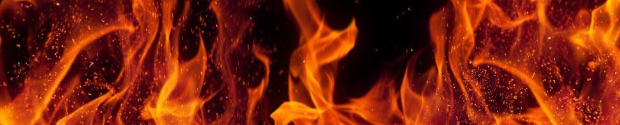 Biomass fire